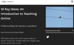 12 Key Ideas: An Introduction to Teaching Online